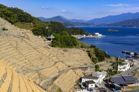 Yusu's thousand rice terrace Stok Fotoğraf - 148957605