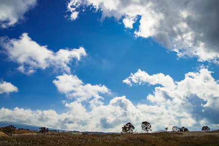 Flowing clouds of Asagiri Plateau