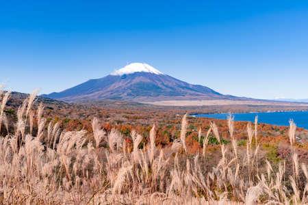 Lake Yamanaka and Mt. Fuji seen from a panoramic table