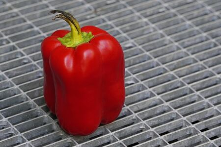 Red Bulgarian pepper with black ponytailagainst the iron lattice, stale food. bacteria multiply in vegetables Stockfoto