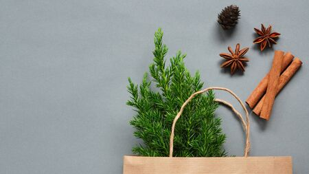A small Christmas tree as gift for Christmas and New year in paper bag.Decoration with cinnamon sticks and cone. fir branches as holiday decoration composition. Copy space for text. Top view 스톡 콘텐츠