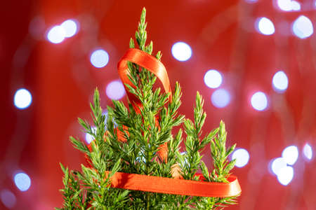 blurred small green fir tree on a red background with lights. New year or Christmas decorations, preparation for holidays. Banque d'images