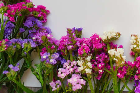 Dry colorful flowers on the white background. Autumn home decoration, floristic frame. Close up with copy Space. Herbarium of wild flowers.Flat lay, top view. bouquet of dried flowers of all colors