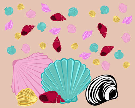 Collection of various types of colorful sea shells with a brown background