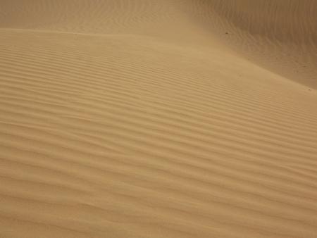 thar: SAND IN THAR DESERT