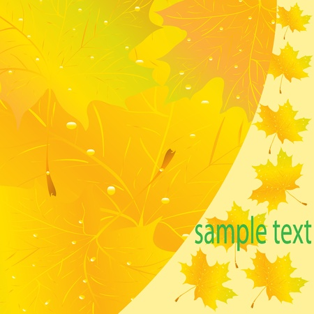 Abstract flower background Stock Vector - 9719117