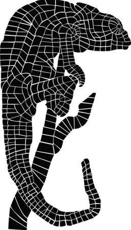 Cam�l�on Illustration