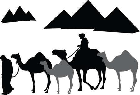 vecteur de la caravane de dromadaires Illustration