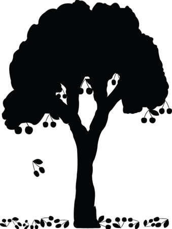 arbre de la cerise - vecteur