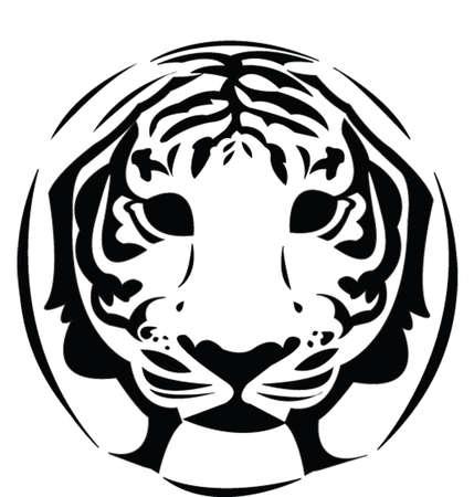 tigre - vecteur