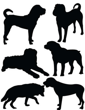 dog collection  - vector Illustration