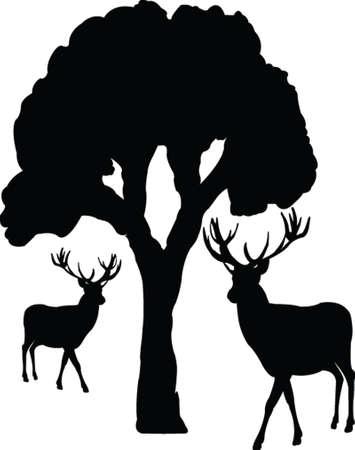 deer silhouette: tree and deer - vector Illustration