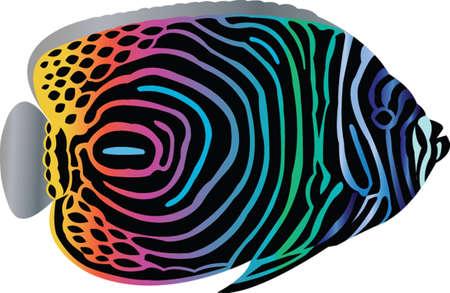 poissons tropicaux - vecteur Illustration