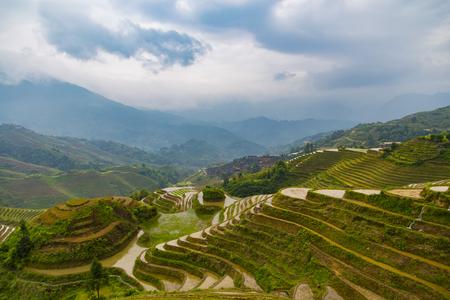 yuan yang: Longji terrace