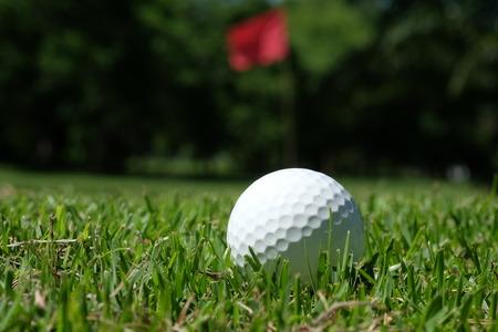 golf  ball: pelota de golf en curso