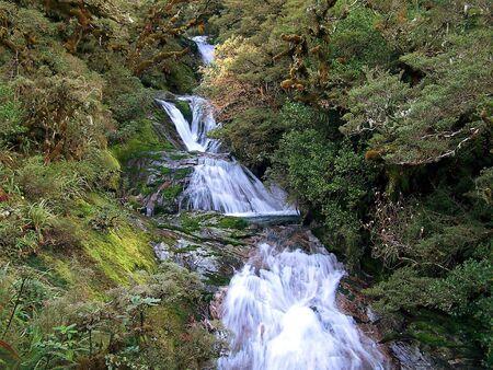 tramping: Cascada en Milford Track