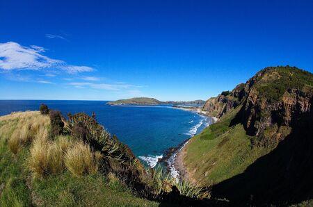 new zealand flax: Scenic Otago coastline, view from Heyward Point towards Aramoana Mole and Tairoa Head, featuring rugged steep cliffs and sandy beaches Stock Photo
