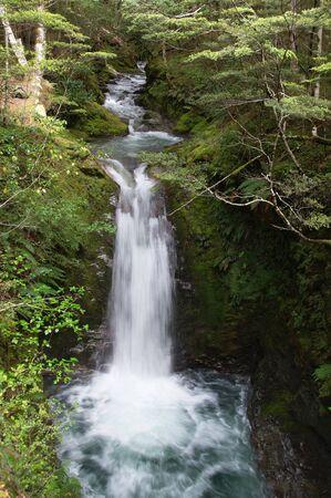 tramping: Cascada de la cascada cerca de Sam Summers Hut en 12 Mile Creek (Mt Crichton Loop), por la que se encuentra entre Glenorchy y Queenstown, Nueva Zelanda
