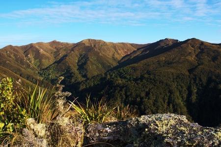 tramping: Horizonte de picos de plata fotografiado desde el p�lpito Rock (Rosella Ridge), roca p�lpito poco a pico de plata y Pinnacle, Dunedin, Nueva Zelanda Foto de archivo