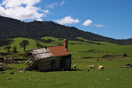 Ruined half torn down farmhouse in Tahakopa Valley, Catlins, New Zealand photo