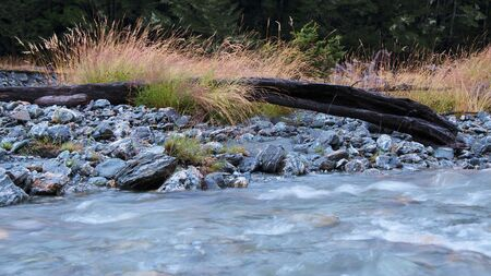 Driftwood in the middle of Rees River bed, Mount Aspiring National Park, New Zealand photo