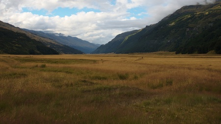 Open grassy plains of Rees Valley, Mount Aspiring National Park, New Zealand photo