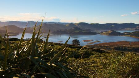 Hoopers Inlet, Pen�nsula de Otago, Dunedin, Nueva Zelanda photo