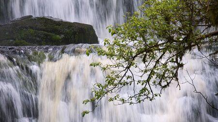 deatil: Deatil of Purakaunui Falls in full flow, Catlins, Otago, New Zealand Stock Photo