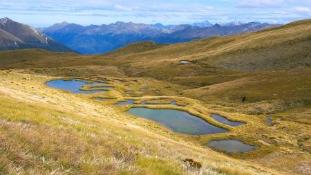 moltitudine: Moltitudine di laghetti sulle cime nord di Green Lake, Parco Nazionale di Fiordland, Southland, Nuova Zelanda Archivio Fotografico