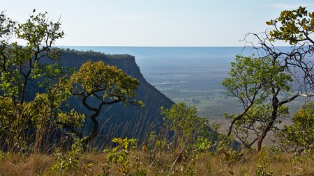 santo: Vegetation on table mountains Serra do Espirito Santo, near Mateiros, Jalap�o, Tocantins, Brazil