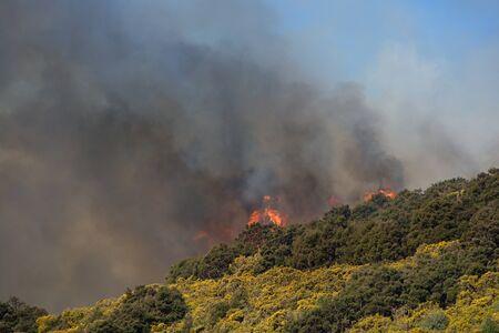 bush fire: Bush fire above Outram Glen, Otago, New Zealand