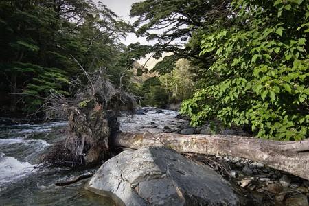 canterbury: Direction Temple South Stream, Canterbury, Nouvelle-Z�lande