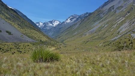 canterbury: Watson Stream, Canterbury, New Zealand