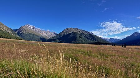 tramping: Tramping up Ahuriri Valley, Canterbury, New Zealand