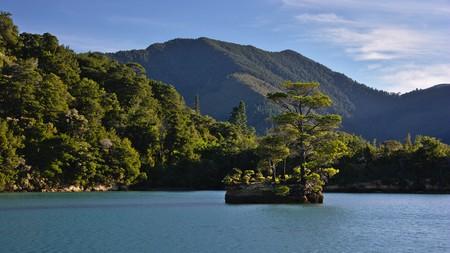 marlborough: Miniature island, Nydia Bay, Pelorus Sound, Marlborough, New Zealand Stock Photo