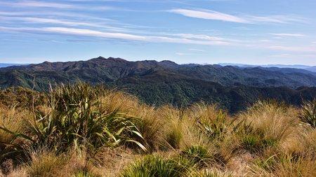 green ridge: Silver Peaks skyline, Dunedin, New Zealand Stock Photo