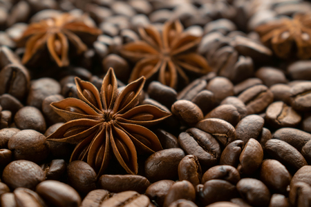 whole starlets of a anise ice on mounds of coffee beans