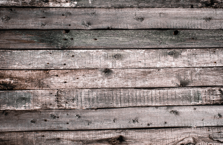 The texture of the old light wooden fence with chopped off knots and cracks. Wallpaper for vintage design