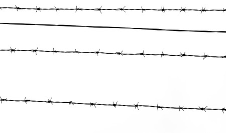 Isolated black barbed wire silhouette on a white background. Wallpaper with space for text