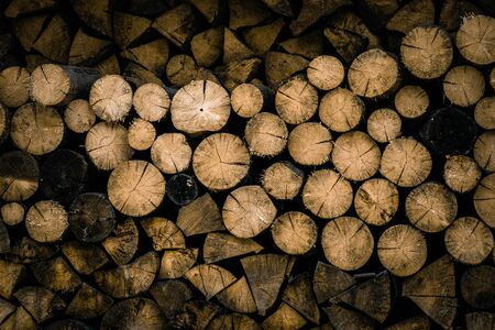 Sawed logs of trees. Background of cut trees, harvesting wood for the winter. Фото со стока