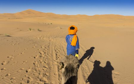 bedouin: Bedouin camel guide Editorial
