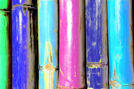 Colorful of Bamboo  , texture  photo