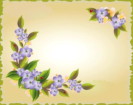 flor: vintage illustration with the violet  flowers