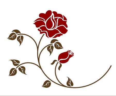 red roses on the white backgroud. Please check my portfolio for more versions Vector