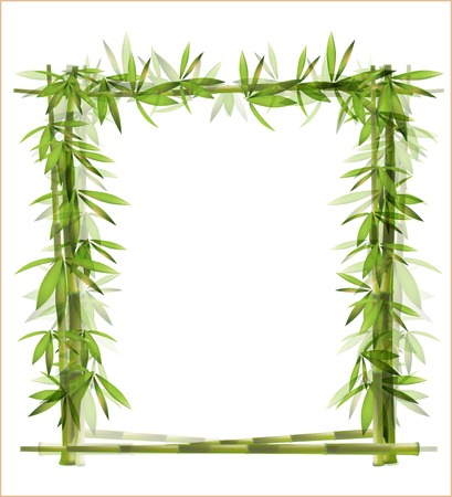 rainforest tree:  bamboo frame
