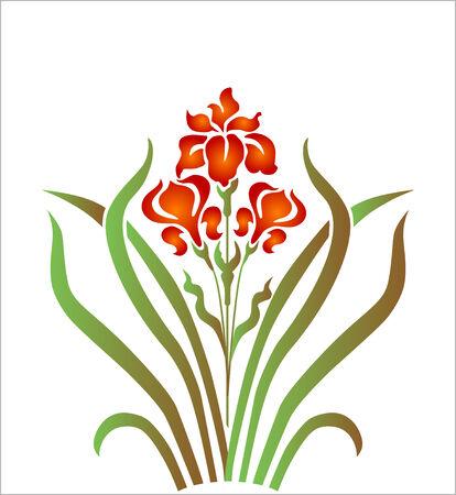 flower bunch: iris