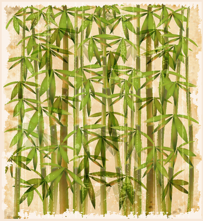 oriental ethnicity: vintage illustration of the bamboo forest