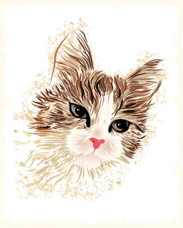 pussycat: vintage portrait of the cat Illustration