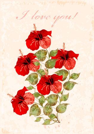 beautiful red hibiscus flower: tarjeta de felicitaci�n Vintage con hibiscuses