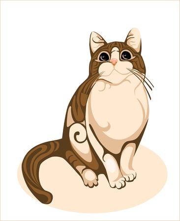 cute chocolate: chocolate cat